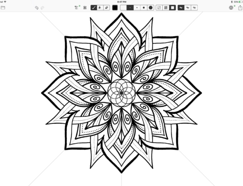 How to Create Unique Symmetrical Designs in Amaziograph on the iPad